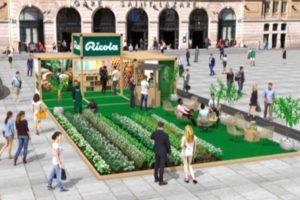 le-champ-des-plantes-paris-ricola-agence-akinai-2020-3
